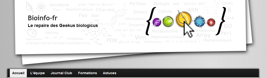 Screenshot Bioinfo-fr
